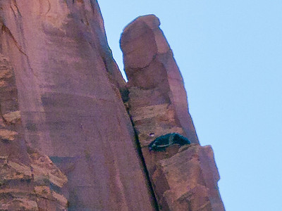 Mineral Bottom, Labyrinth Canyon Green River<br /> ... this is a closeup of the spire in #017, apparently just after Diego landed. His chute is not yet deflated.
