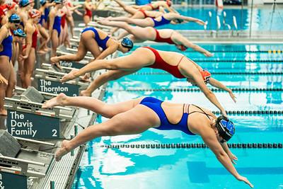 141  -  Minnetonka Girls Swim 9-26-19    EP   A9_08775