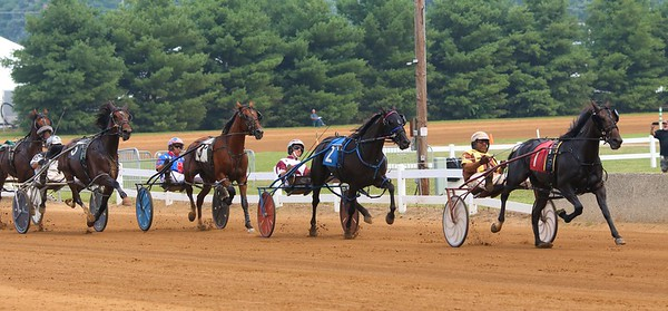 A group of harness racers, led by Doug Rideout and Pure Cotton (1), compete during the 31st Elkhart County Classic (3 year old filly pace) on Saturday at the Elkhart County 4-H Fair in Goshen.