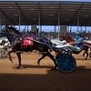 The horses in the 3-year-old colt pace, 2nd division race begin the race in front of the grandstands Tuesday during harness racing at the Elkhart County 4-H Fairgrounds.