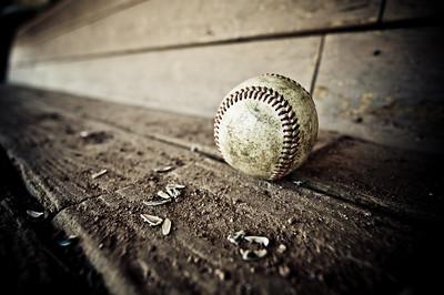 Baseball and Sunflower Seeds