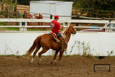 Rodeo!© Copyright m2 Photography - Michael J. Mikkelson 2009. All Rights Reserved. Images can not be used without permission.