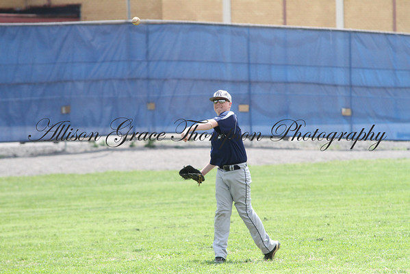 Monroe County Baseball 2011 Season