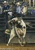 20130209_Monster Bull Riding-21