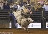 20130209_Monster Bull Riding-17