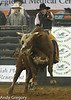 20130209_Monster Bull Riding-12