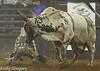 20130209_Monster Bull Riding-10