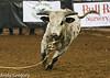 20130209_Monster Bull Riding-19