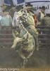 20130209_Monster Bull Riding-8
