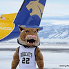 Montana State mascot Champ at Gallatin Field airport in Belgrade Montana with the new Horizon Air MSU Bobcat plane