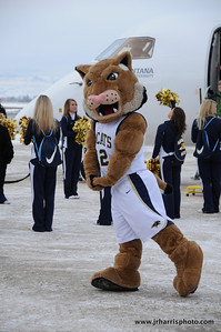 Montana State mascot Champ and the MSU Cheerleaders at Gallatin Field airport in Belgrade Montana with the new Horizon Air MSU Bobcat plane