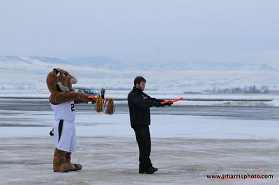 Champ helping guide the new Horizon Air Montana State University Bobcats plane!