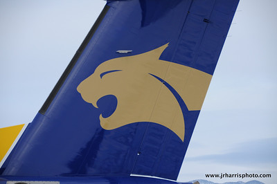 MSU Bobcat logo on the new plane at Gallatin Field airport in Belgrade Montana with the new Horizon Air MSU Bobcat plane