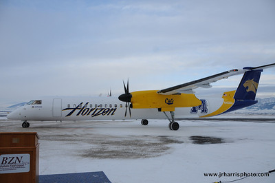 Horizon Air showing of the blue and gold colors of Montana State University Bobcats new plane!