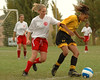 Montclair Clippers U16 Girls at BYSL Arsenal Gold in Benicia
