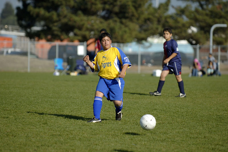 Fall 2005 Jack London Youth Soccer League end-of-season Tournament, Championship game of the U14 Boys Gold Flight, played by two Oakland Soccer Club teams, Tigres and Club Tepa. Tigres won, 3-0.