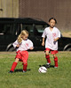 Montclair Soccer Club's U8 boys and girls teams on opening day for the Fall 2008 season.
