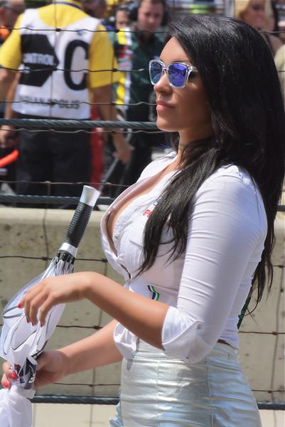 MotoGP Umbrella Girl Red Bull Grand Prix