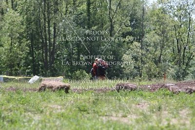 Motocross Free Galleries!!