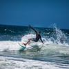 surfy-1