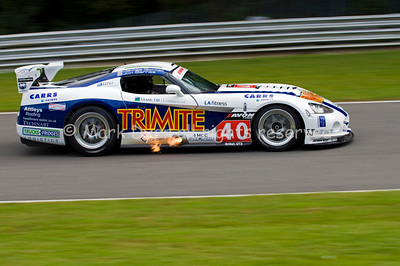 Dodge Viper British GT at Dingle Dell