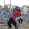 MaGwuire Baseball 108