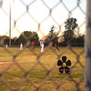 MaGwuire Baseball 138