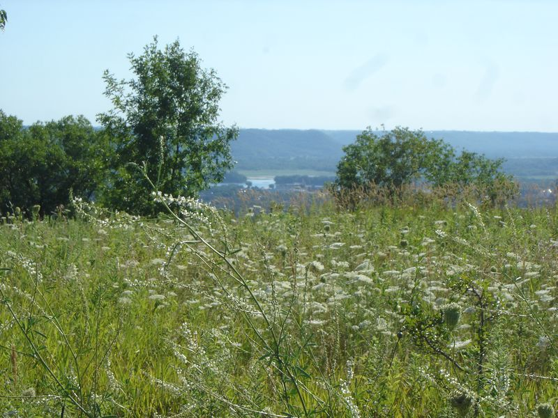 I love these Bluff meadows overlooking the river valley..what a great place to be.