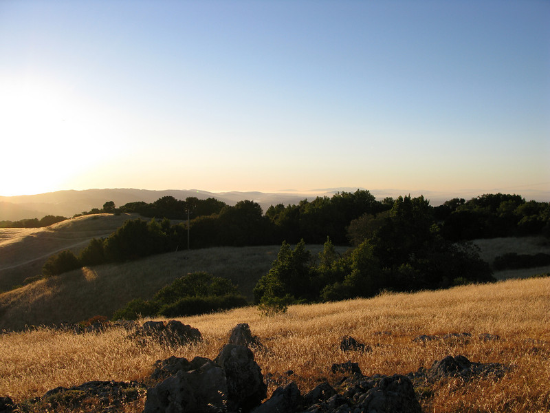 View north above Backpackers camp<br /> Russian Ridge<br /> June 17, 2008
