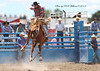 John P Gill & Sons supplied the excellent livestock for the Murrumbateman Rodeo 2013. This photo also appears on the back cover of the Yass Tribune ed. 22  February 2013.