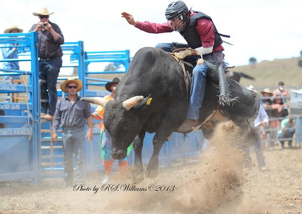 George Rodrom from Dubbo tries his hand at the Open Bull Ride at Murrumbateman 2013.