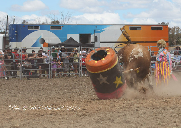 """""""Pollie"""" cops a hammering from one of the bulls at Murrumbateman Rodeo 2013."""