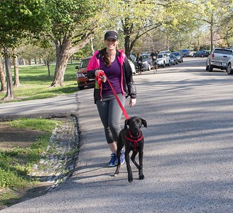 Mutt Strutt 5K & 1-MIle Fun Run/Walk 2018