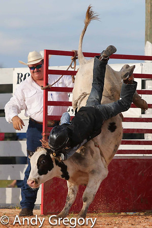 Myakka City Bull Riding Sept '12