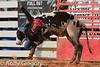 20120915_Myakka Bull Riding-9