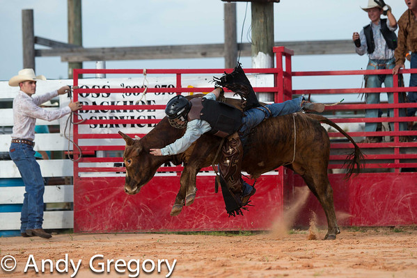 Myakka City Bull riding 2012 Juniors