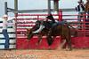 20120728_Junior Bulls-3