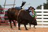 20120728_Junior Bulls-15