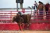 20120728_Junior Bulls-2