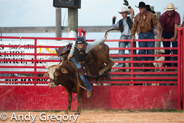 20120728_Junior Bulls-1