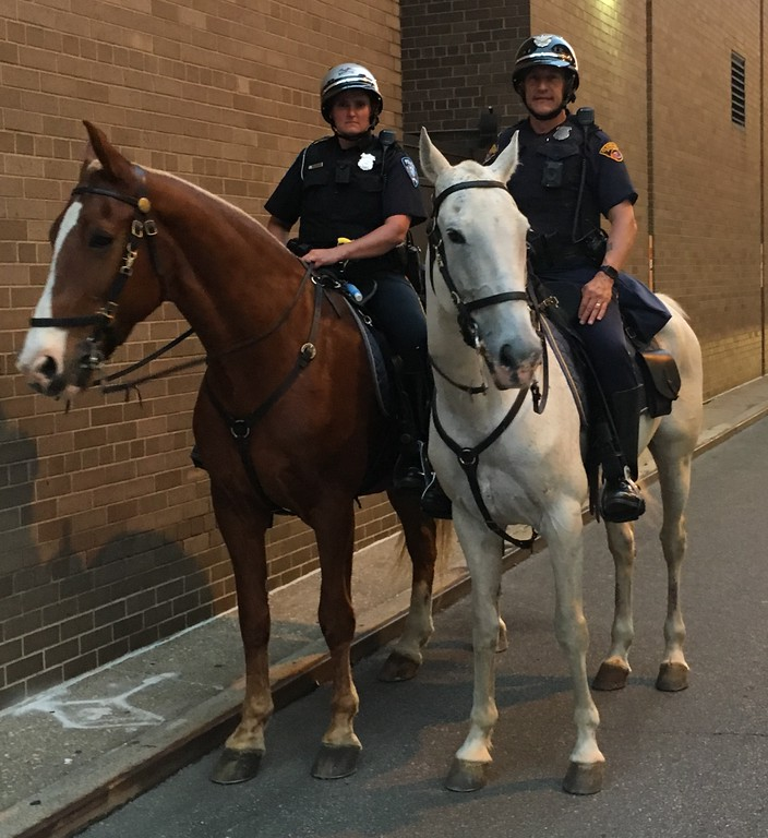 . Cleveland Mounted Police, Game 1 Watch Party. David S. Glasier - The News-Herald
