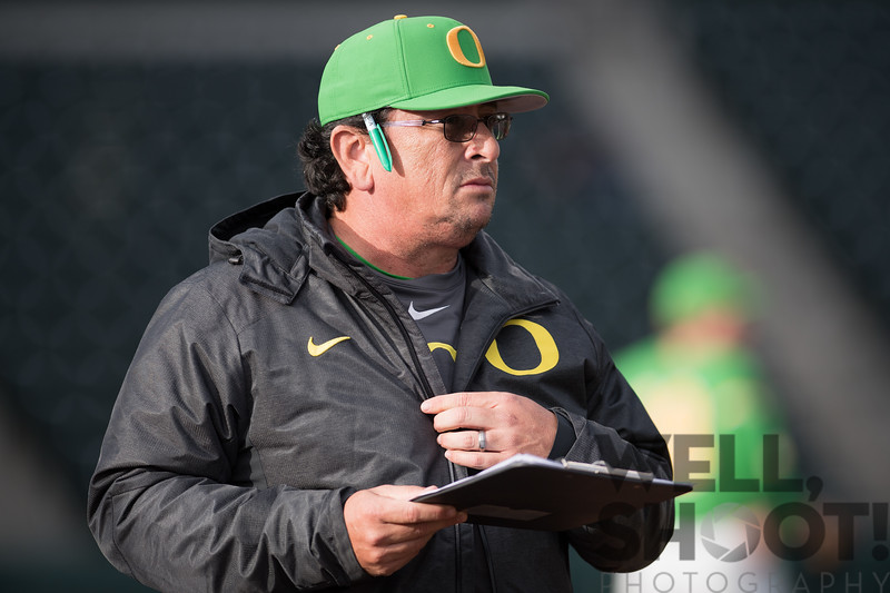 #goducks #ducks