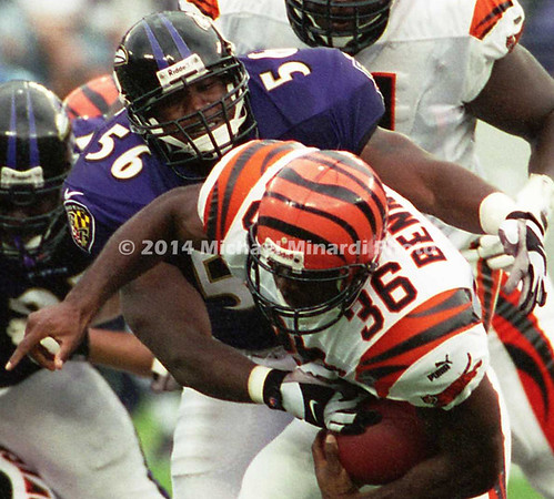 BALTIMORE, MD - SEPTEMBER 24: Half Back Brandon Bennett #36 of the Cincinnati Bengals carries the ball through the Baltimore Ravens front line for some extra yardage with the help of good blocking by his teammate Offensive Tackle Willie Anderson #71, but is tackled by Linebacker Anthony Davis #56 and Defensive End Michael McCrary #99 of the Baltimore Ravens with Linebacker Ray Lewis #52 ready to assist in a NFL game at PSINet Stadium on September 24, 2000 in Baltimore, Maryland. The Ravens won the game 37-0. (Photo by Michael J. Minardi) *** Local Caption *** Anthony Davis;Brandon Bennett;Michael McCrary;Ray Lewis;Willie Anderson