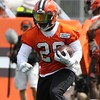 Tim Phillis - The News-Herald<br /> Scenes from Day 2 of Cleveland Browns training camp on July 28 in Berea.