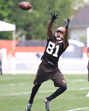 072916 Browns Training Camp