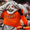 Michael Allen Blair/ MBlair@21st CenturyMedia.com<br /> Browns' fans react to a fourth quarter fumble by quarterback Brandon Weeden during the fourth quarter of Sunday's game at FirstEnergy Stadium in Cleveland, OH. on November 24, 2013.