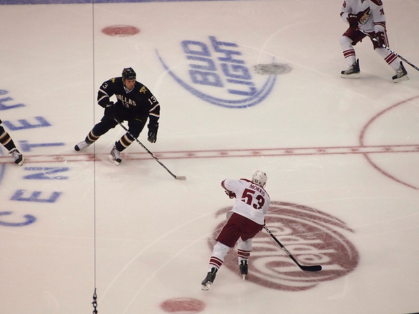 NHL 2010-2011 Season