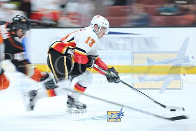 NHL 2017: Flames vs Ducks DEC 29