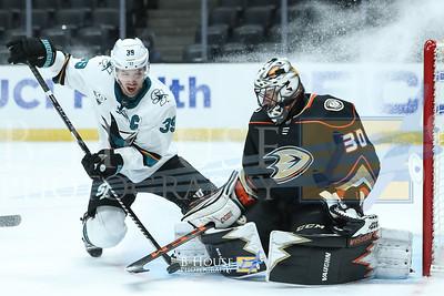 NHL 2021: Sharks vs Ducks FEB 06
