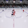 WINGS VS BLUES PROSPECTS